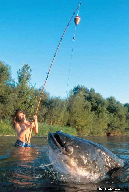 где ловить рыбу в великом новгороде